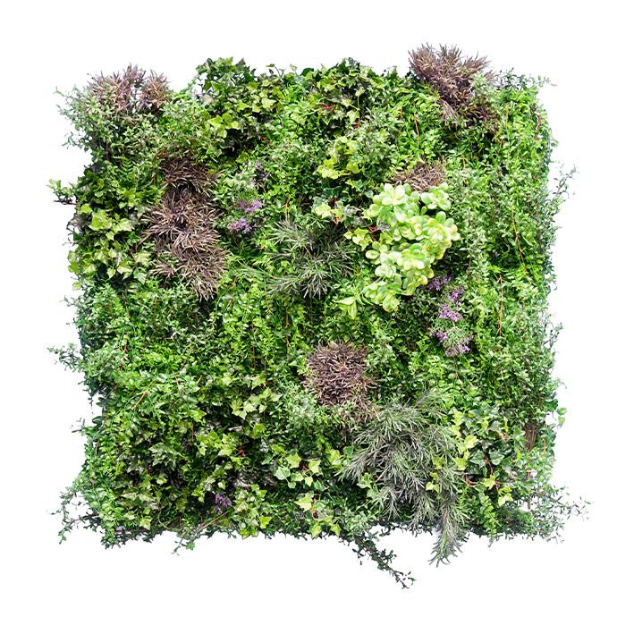 Bespoke Ivy Fern Green Wall