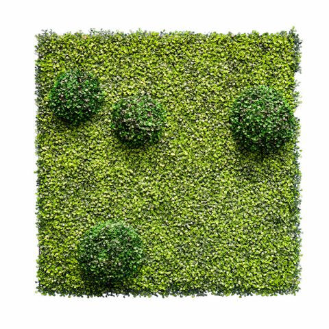 Topiary-Green-Wall