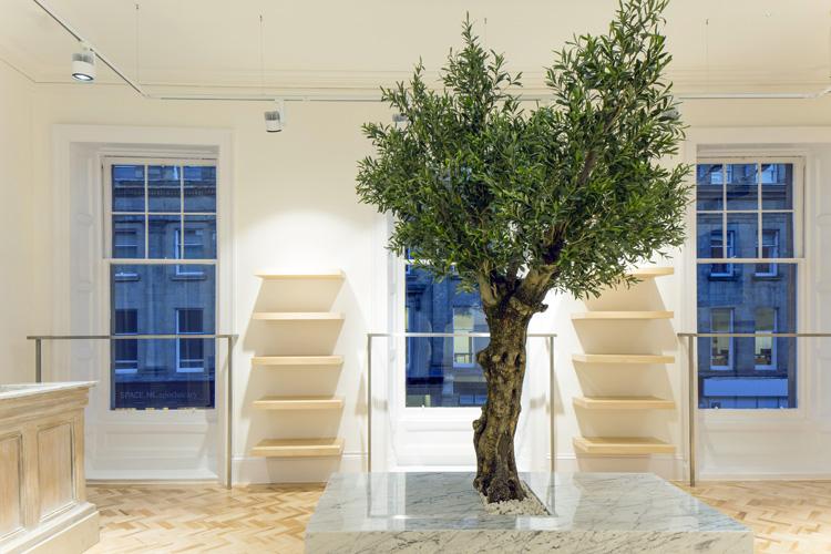 Bespoke Tree 5