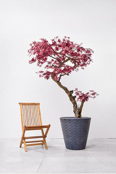 bespoke-tree-1